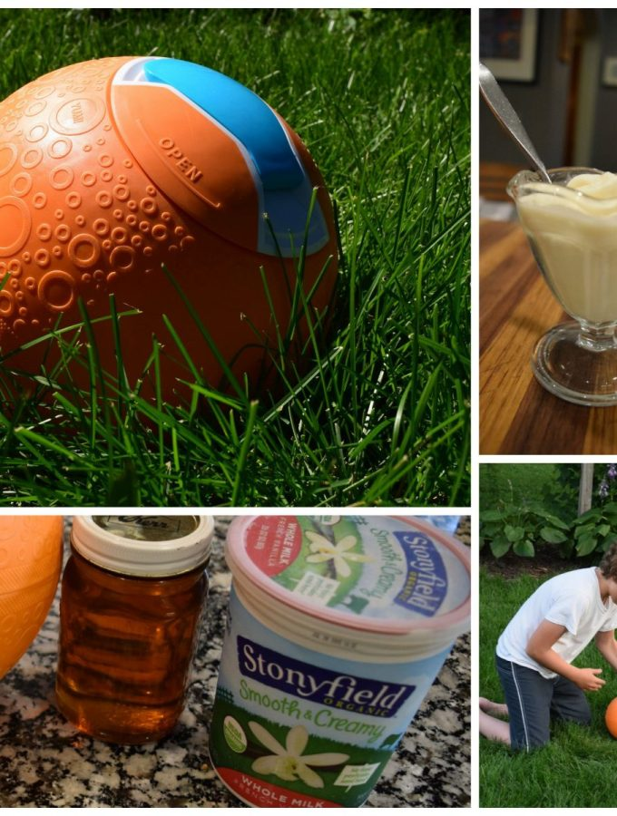 Maple Vanilla Frozen Yogurt with YayLabs! Ice Cream Ball