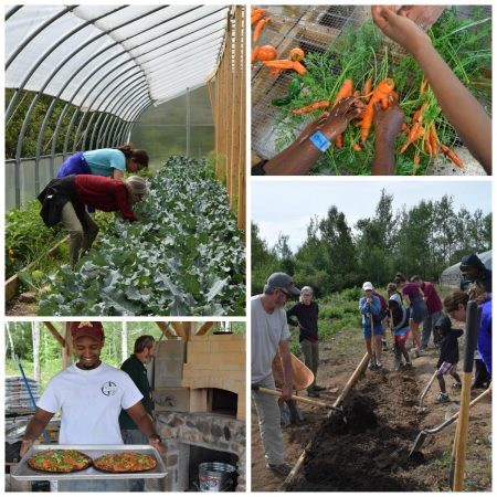 Organic farm at Wolf Ridge ELC