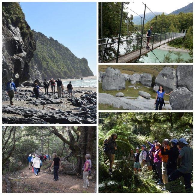Hiking in New Zealand // www.mindfulmomma.com