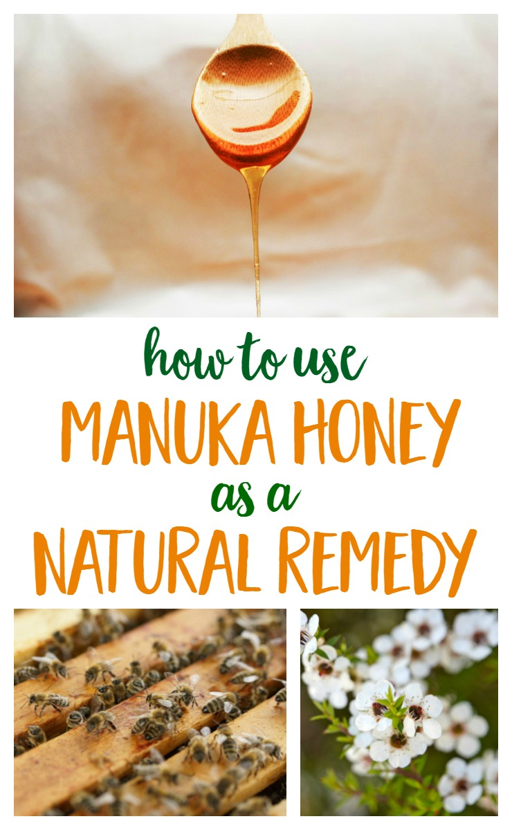 Manuka Honey from New Zealand has many surprising health benefits and is often used as a natural remedy | Remedies | Natural Living | Health via @MindfulMomma