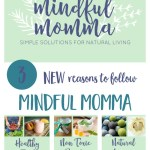 3 Reasons to Follow Mindful Momma + a Celebration Giveaway!