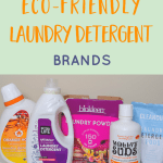 The Best Eco Friendly Laundry Detergent Brands