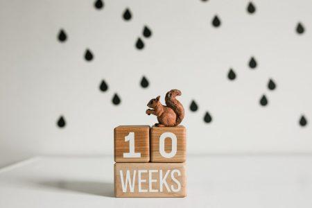 Wooden milestone baby blocks