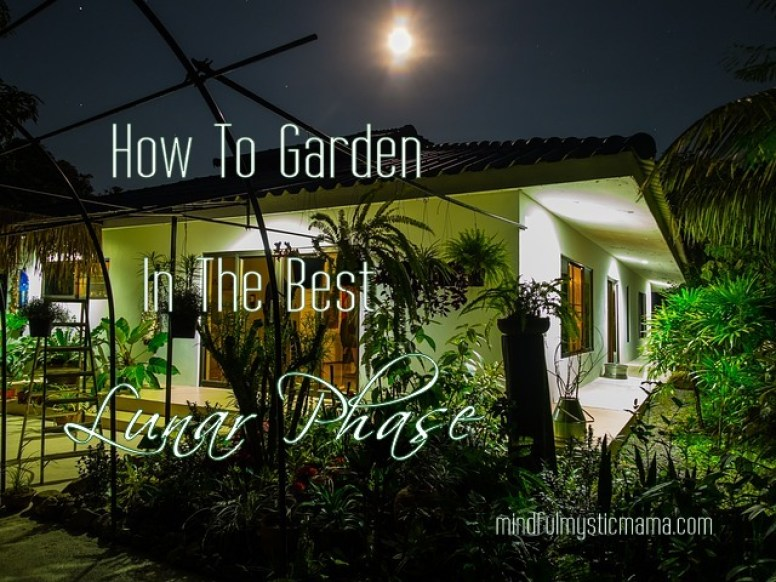 how to garden in the best lunar phase