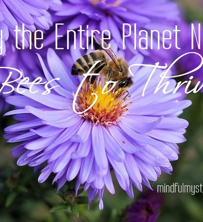 Why the Entire Planet Needs Bees to Thrive