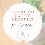 3 Promising Native Remedies for Cancer
