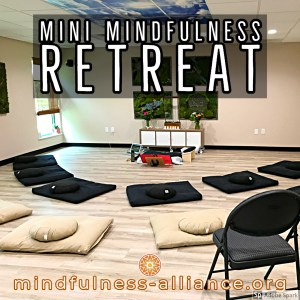 Mini Mindfulness Retreat