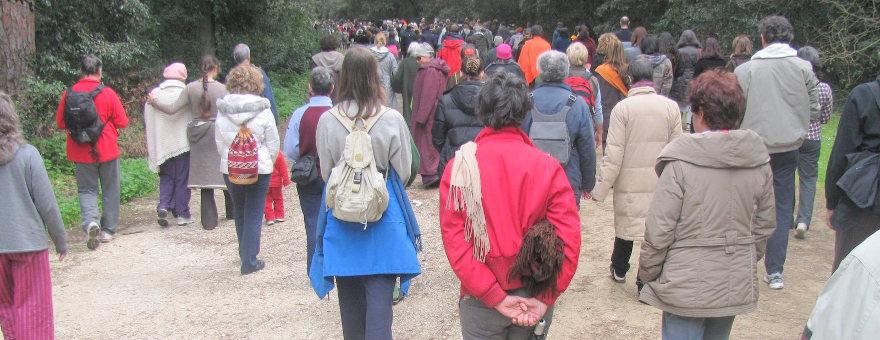 Mindfulness walk