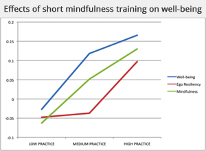Mindfulness effects on well-being graph