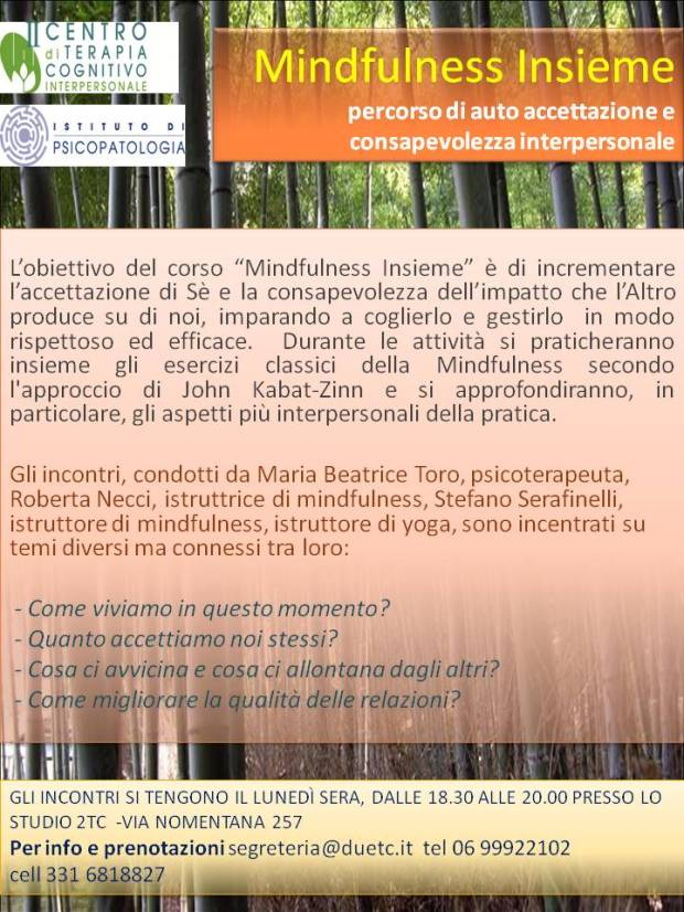 mindfulness-insieme-verticale