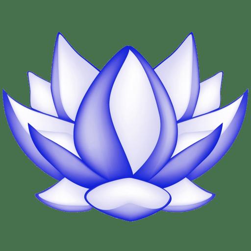 The Mindfulness Meditation Institute