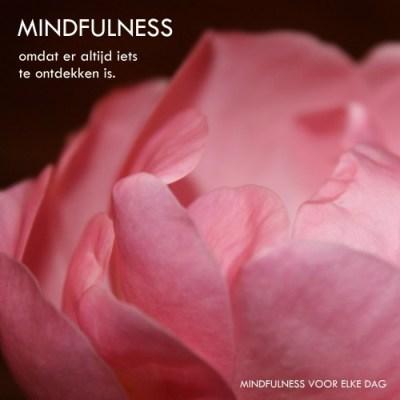 mindfulness is ontdekken