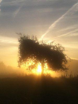 Stilteretraite: kijken in de spiegel van het leven
