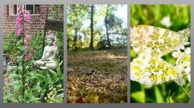 Mindfulness training in Amersfoort door Henriette Dierckxsens