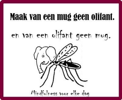 Maak van een mug geen olifant