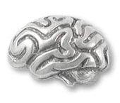 brain_pin_large.jpg
