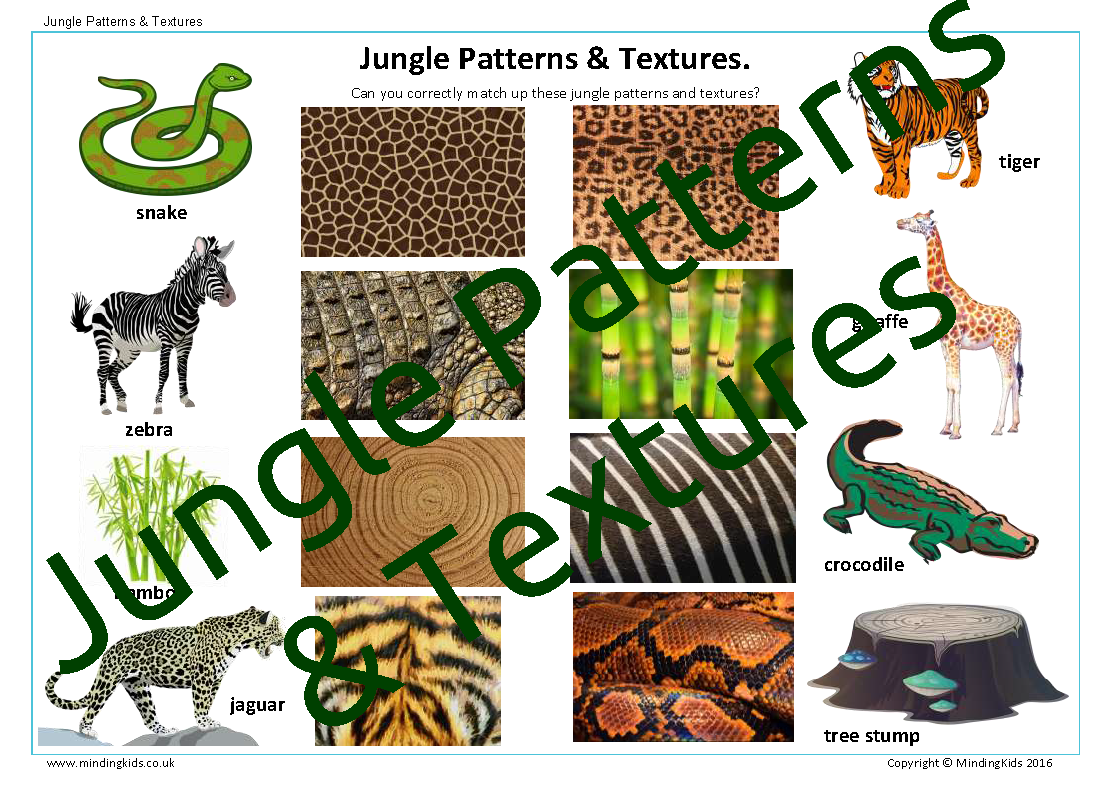 In The Jungle Activity Pack