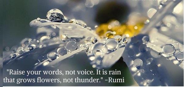 Attribute to Rumi
