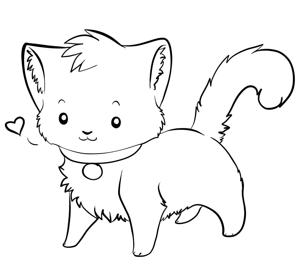 cool guy cat