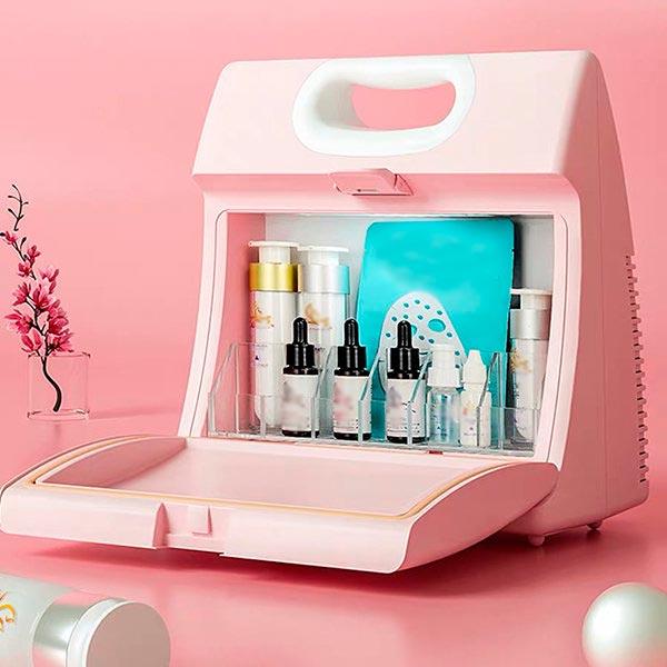 Mini Lunchbox Makeup Fridge