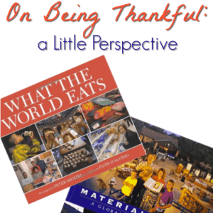 On Being Thankful: a Little Perspective