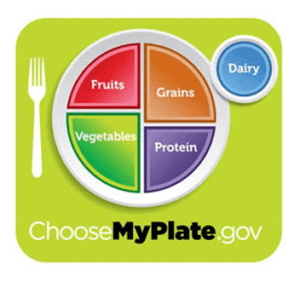 My Plate: What You Need to Know about the New USDA Nutrition Recommendations