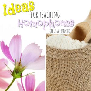 Ideas for Teaching Homophones plus a Freebie!