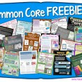 Are you looking for a bunch of Common Core resources? Hundreds of Teachers Pay Teachers sellers came together to created these FREE resources full of tips and lessons for teachers. Each resource is broken down by grade level and subject area, so click through to get the links to all of the resources!