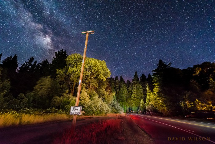 1964 Flood:  high water marker on the Avenue of the Giants, beneath Milky Way. Horizontal composition with Avenue of the Giants.