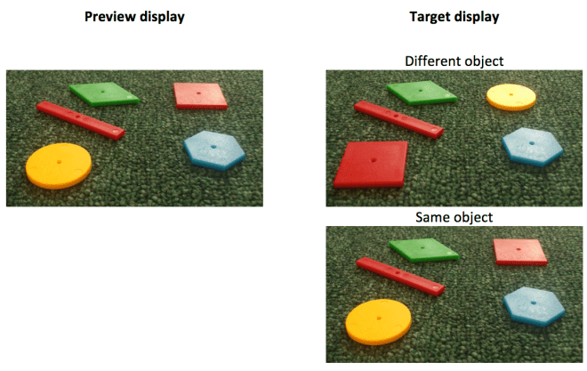 "Figure 1. The two headings show two successive displays. Subjects are asked to identify the perspectival shape of the distant right object in the target display. In ""different object"" the target matches (with respect to perspectival shape) a preview object seen as a numerically different object. In ""same object"" the target object matches (with respect to perspectival shape) a preview object seen as numerically the same object."