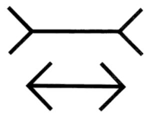 The Muller-Lyer arrows.