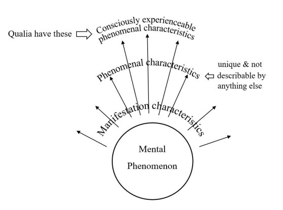 Qualia, manifestation characteristics, and phenomenal characteristics