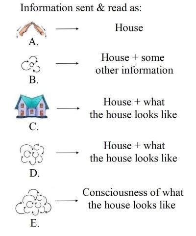 Information, signal, consciousness