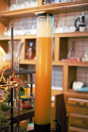 prankster-bar-sector-29-gurgaon-mindwagons-prankster-beer-entrygate