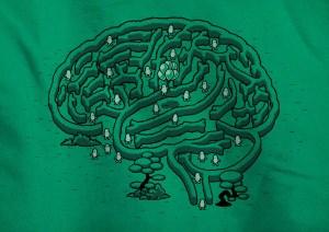 лабиринты мозга