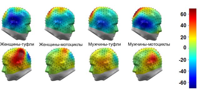 Магнитное поле в различных регионах мозга в промежутке между 150 и 190 миллисекунд после показа картинки. Затылочно-височный регион