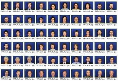 база данных с лицами людей