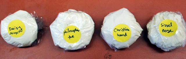 сыр с бактериями, собранными с разных частей человека