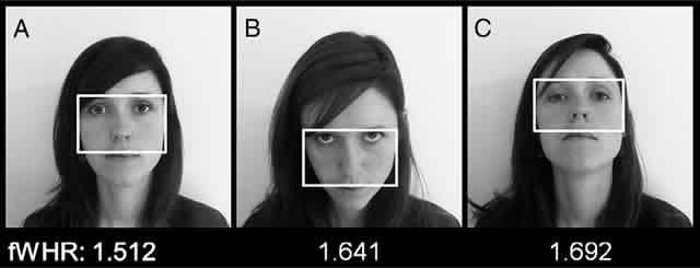 Изменение наклона головы меняет восприятие намерений человека