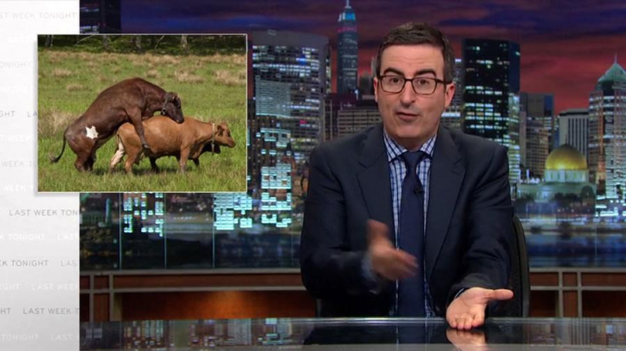 предсказание репродуктивности рогатого скота
