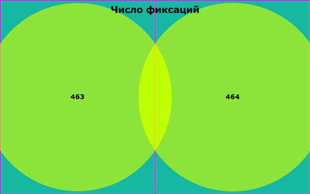 число фиксаций в левом и правом полях