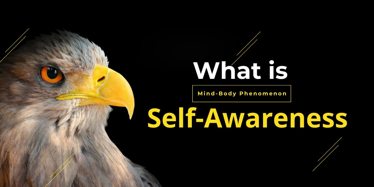 What is Self-Awareness? The Mind-Body Phenomenon