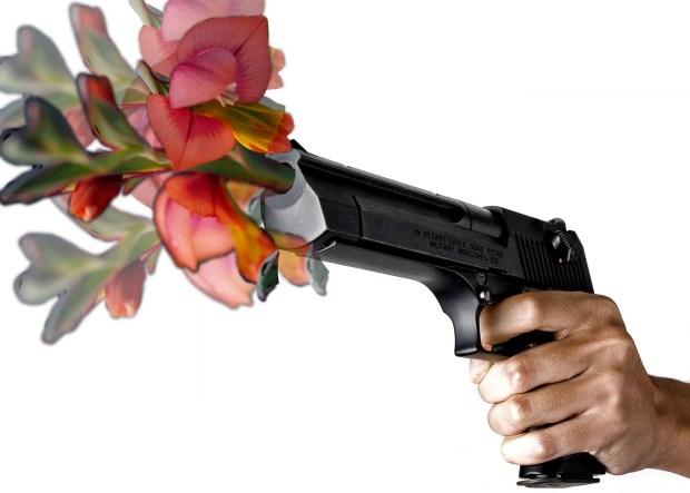 gunflowers