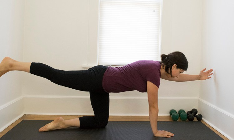 bird dog core exercise on all fours