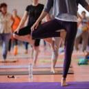 How does one attain moksha through karma yoga? 9