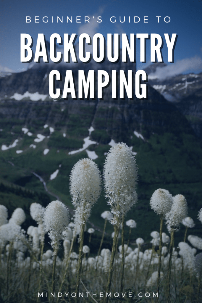 beginner's guide to backcountry camping