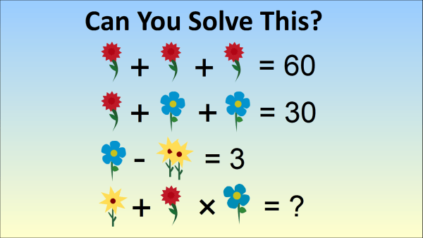 The Flower Math Problem – Chinese Kindergarten Test Question Stumps ...