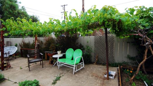 Grapevine Patio_Shade Portion