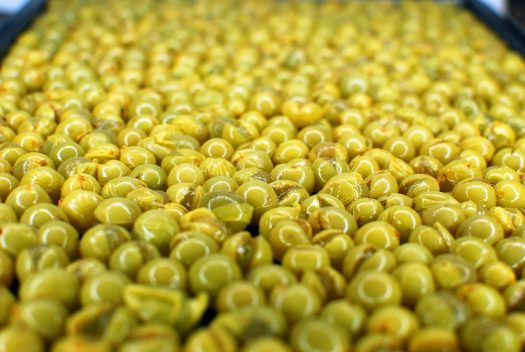 How to Make Organic Raisins 12_Niagara Grapes ready to go in the oven Detail