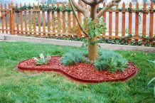 A New Bed for the Coastal Coral 030_The completed bed 3